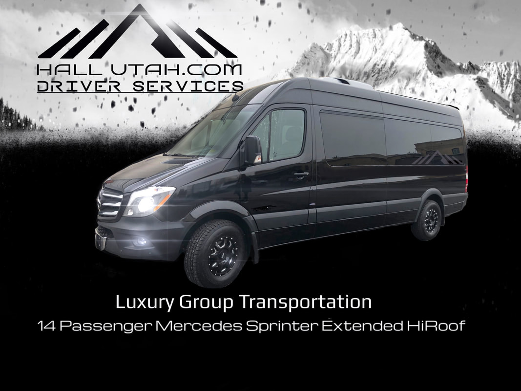 Book 14 Passenger Sprinter Van To?